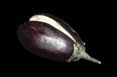 Eggplant Clap