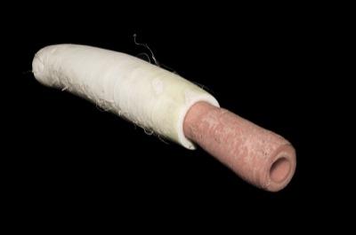 Carrot Radish Horn